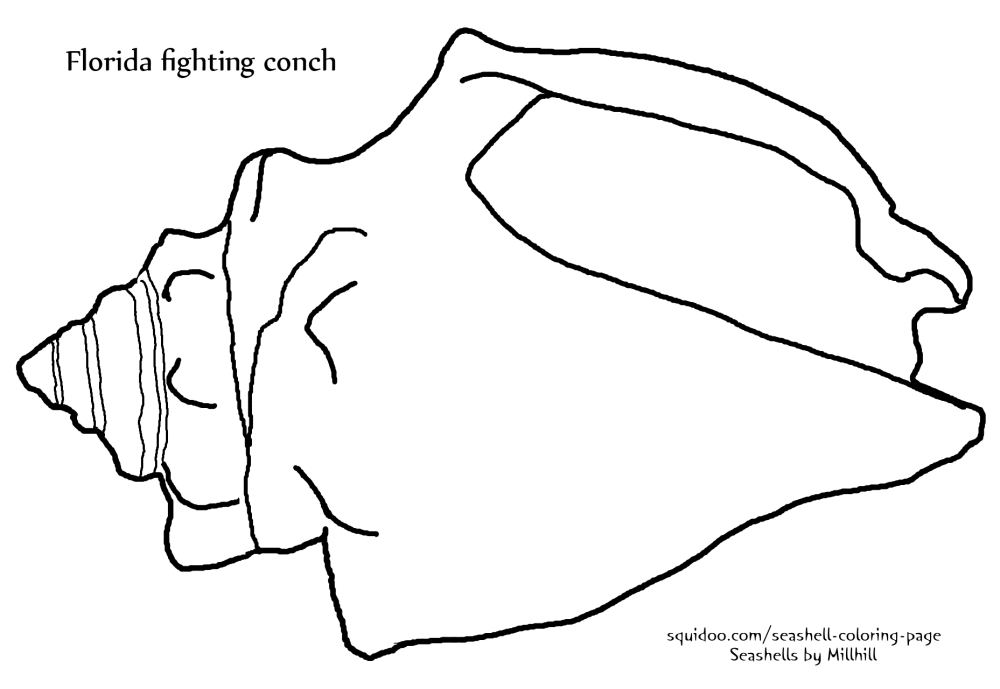 Fighting Conch Seashell Coloring Page (2/2)