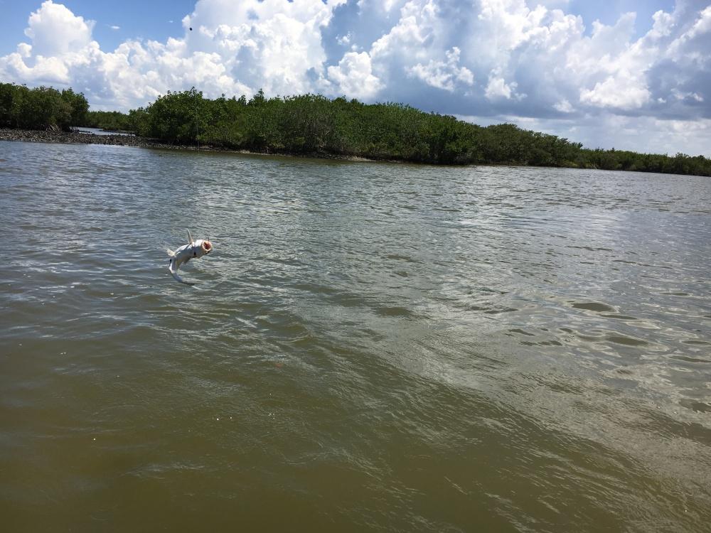 boating florida