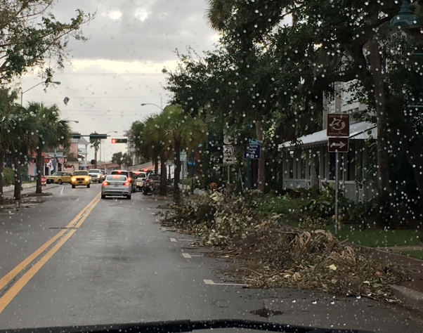 debris lining the road