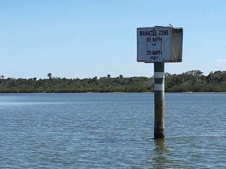manatee zone sign
