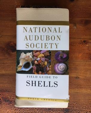 National Audubon Society Field Guide to Shells