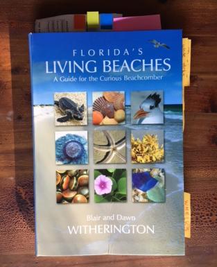 Florida's Living Beaches book cover