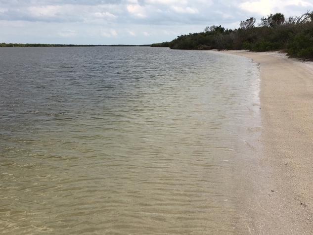 clear water along island beach