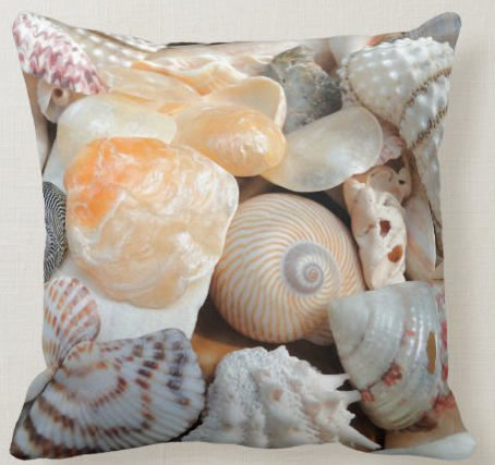 Colorful seashells pillow decorative coastal square beach shells photography jingle nature natural