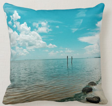 Mosquito lagoon in florida pillow