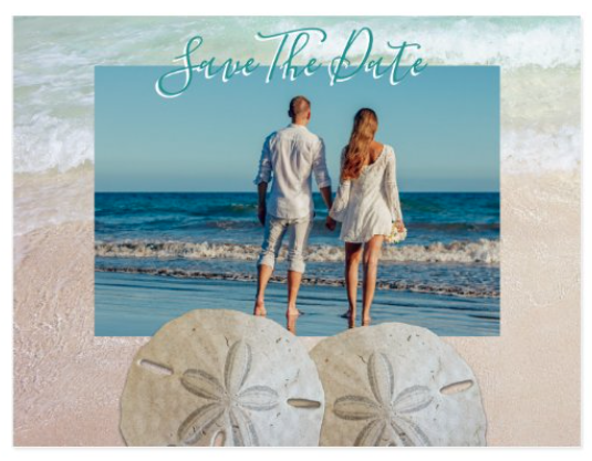 sand dollar photo save the date postcards